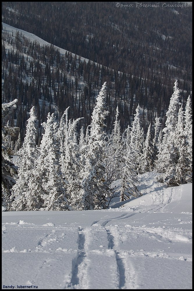 Фотография: гора Зеленая (Кемеровская область), пользователя: Dandy