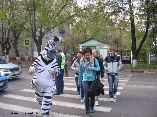 """Фотография: IMG_0430_0.JPG, пользователя: Люберецкий штаб """"Местные"""""""