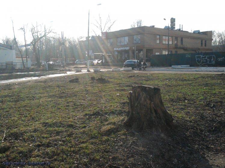 Фотография: Фото-0946.jpg, пользователя: OlgaUryevna
