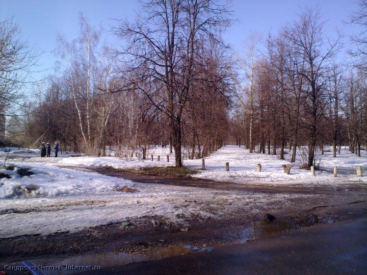 Фотография: Участок парка Наташинские пруды планирующийся под застройку (фото2).jpg, пользователя: Сандро из Чигема