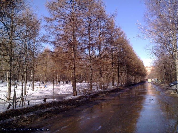Фотография: Участок парка Наташинские пруды планирующийся под застройку (фото3).jpg, пользователя: В@cильичЪ