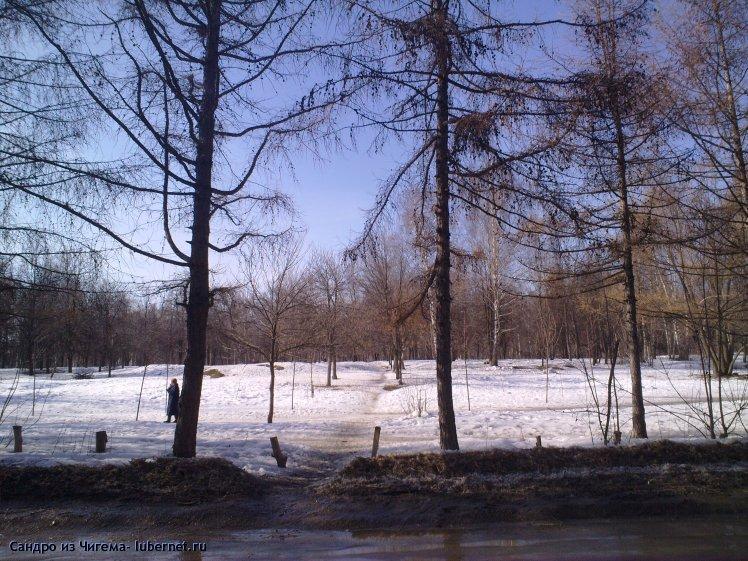 Фотография: Участок парка Наташинские пруды планирующийся под застройку (фото4).jpg, пользователя: В@cильичЪ