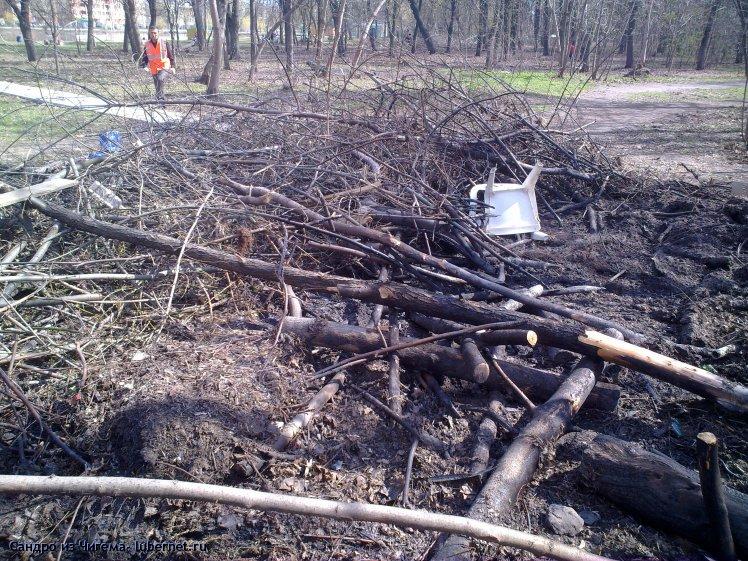 Фотография: Куча мусора рядом с кафе Кораблик  в парке Наташинские пруды.jpg, пользователя: В@cильичЪ