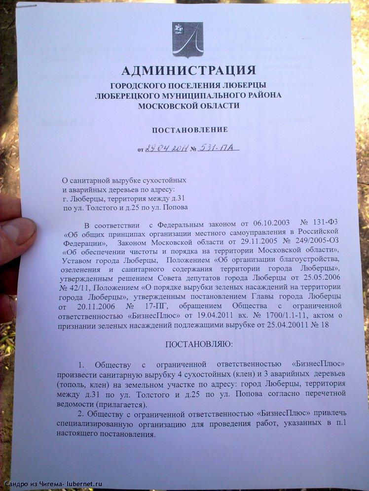 Фотография: Постановление о вырубке деревьев на ул. Толстого.jpg, пользователя: В@cильичЪ