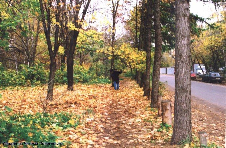 Фотография: Осенняя аллея.jpg, пользователя: В@cильичЪ