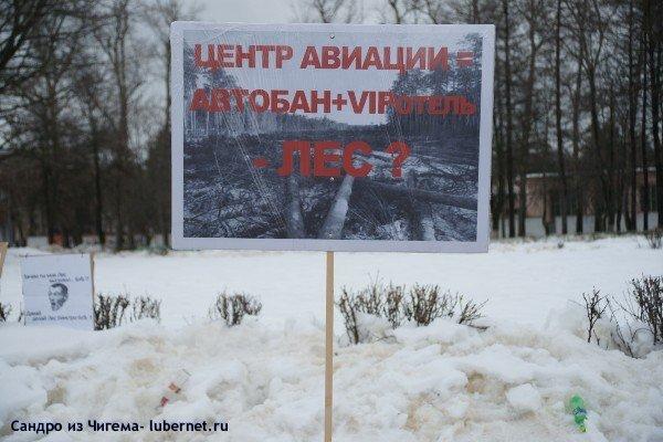 Фотография: В Жуковском вырубили 12Га соснового леса .JPG, пользователя: В@cильичЪ