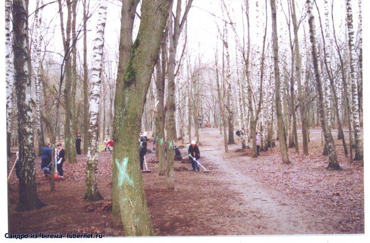 Фотография: Субботник в Наташинском парке 27.04.13г.Деревья помеченные крестами - по заявлению администрации - для пересчета..jpg, пользователя: В@cильичЪ