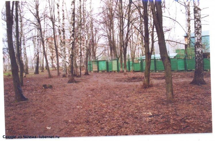 Фотография: Субботник в Наташинском парке 27.04.13г. Липовая аллея теперь заканчивается за забором спортклуба..jpg, пользователя: Сандро из Чигема