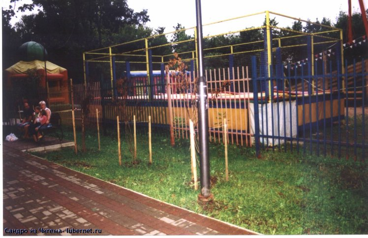 Фотография: Засохшие саженцы сирени в парке.jpg, пользователя: В@cильичЪ