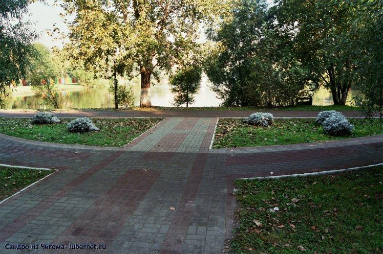 Фотография: Сквер у нижнего пруда с ежами из циннерарии.jpg, пользователя: В@cильичЪ