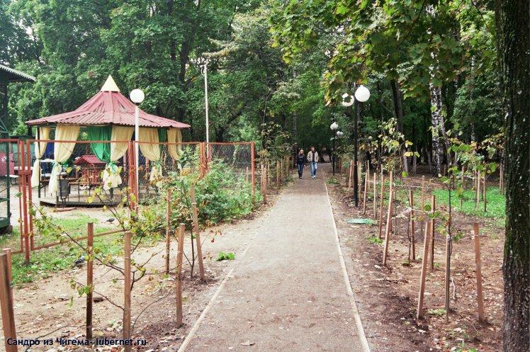 Фотография: Аллея на которой посадил 3 дерева Воробьев А.Ю..jpg, пользователя: В@сильичЪ