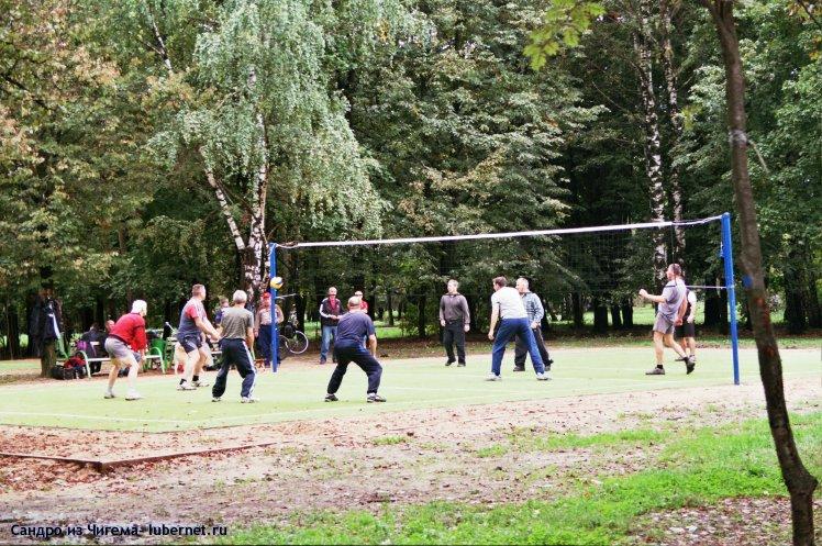 Фотография: Игроки в воллейбол.jpg, пользователя: В@cильичЪ