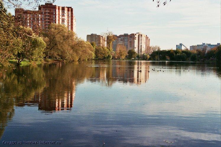 Фотография: Утки на осеннем пруду.jpg, пользователя: В@сильичЪ