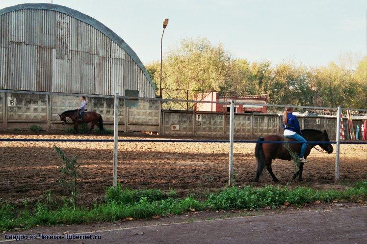 Фотография: Тренировка любителей верховой езды.jpg, пользователя: Иван Васильевич