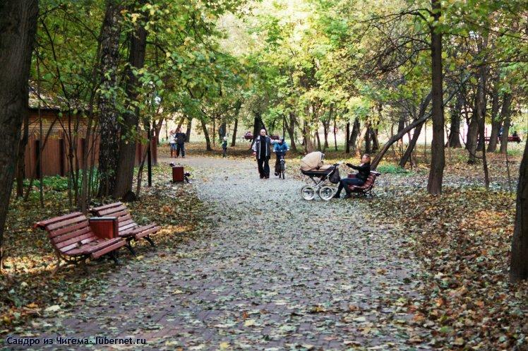 Фотография: Аллея в период листопада.jpg, пользователя: В@cильичЪ