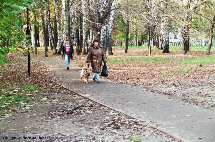 Фотография: Дама с собачкой.jpg, пользователя: В@cильичЪ