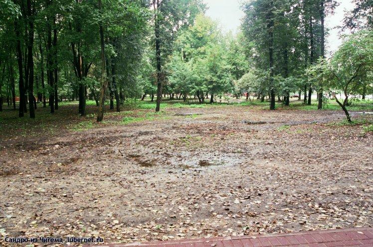Фотография: Проплешина рядом с верхним прудом (требуется подсадка деревьев).jpg, пользователя: В@сильичЪ
