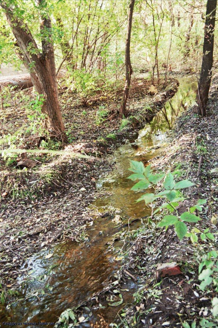 Фотография: Живи родник, живи (ручей питающий в верхний пруд).jpg, пользователя: В@cильичЪ
