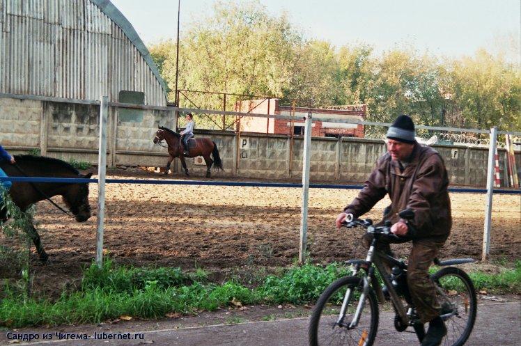 Фотография: Два разных вида спорта.jpg, пользователя: Иван Васильевич