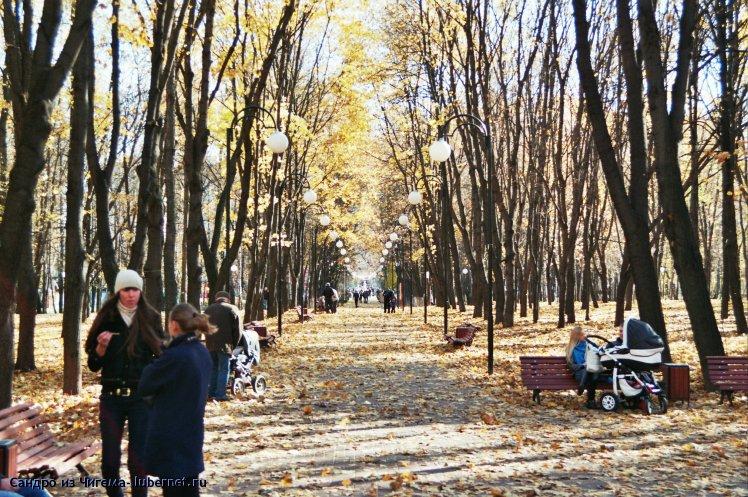 Фотография: Главная аллея в период листопада.jpg, пользователя: В@cильичЪ