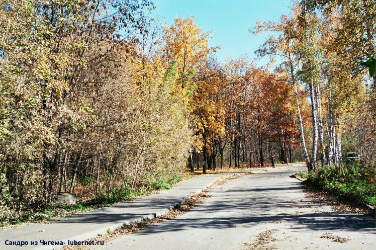 Фотография: Осенняя березовая роща (на ее месте планируется построить ФОК) .jpg, пользователя: В@cильичЪ