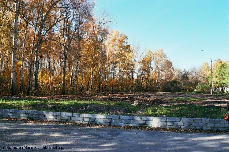 Фотография: Бывшая хоккейная коробка (это место и часть березовой рощи слева будет вырублена при строительстве ФОКа).jpg, пользователя: В@cильичЪ