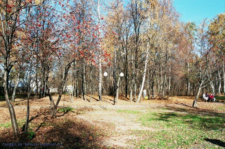 Фотография: Осенняя поляна.jpg, пользователя: Иван Васильевич