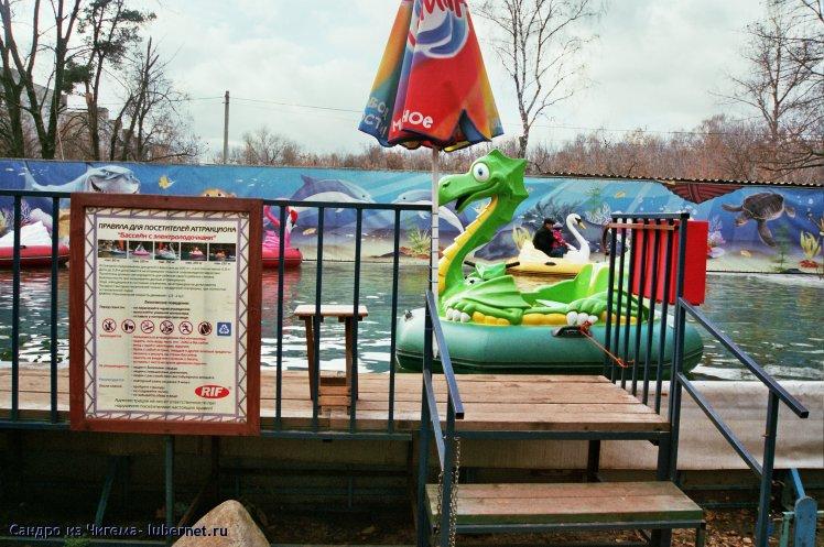 Фотография: Зелёный водяной дракон в ожидании ездоков.jpg, пользователя: В@cильичЪ