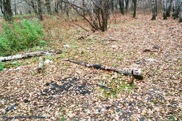 Фотография: Остатки пикника (брошенный мангал и другой мусор).jpg, пользователя: В@cильичЪ