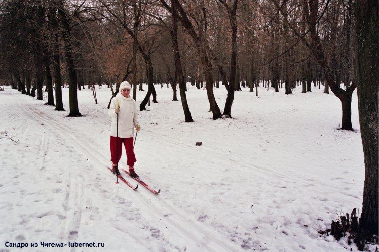 Фотография: Февральская лыжня (или напрасно Люберецая администрация отменила лыжные соревнования в Наташинском парке).jpg, пользователя: В@cильичЪ
