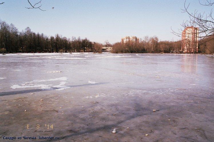 Фотография: После оттепели пруд стал выглядеть как большой каток..jpg, пользователя: В@сильичЪ