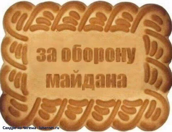 Фотография: печеньки для майдана.jpg, пользователя: Сандро из Чигема