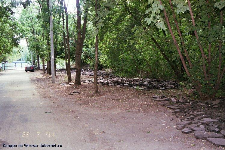 Фотография: Вырубка деревьев для организации автостоянки в березовой роще.jpg, пользователя: В@cильичЪ