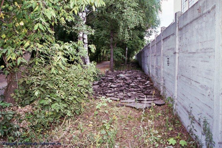 Фотография: Организация места под автостоянку в березовой роще вдоль забора Камовского завода.jpg, пользователя: Сандро из Чигема