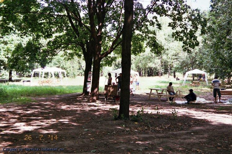 Фотография: Организация платных мест отдыха в парке.jpg, пользователя: В@cильичЪ