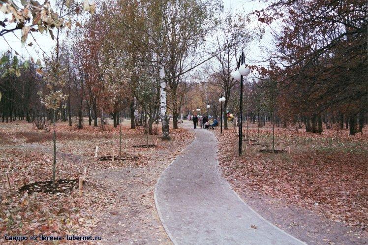 Фотография: Посадка в Наташинском парке небольшой дубовой аллеи (вот только пересадили деревья ещё не сбросившие листья, ещё не в состоянии анабиоза -жаль если не приживутся).jpg, пользователя: В@cильичЪ