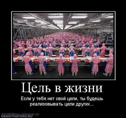 Фотография: 180119_tsel-v-zhizni.jpg, пользователя: FatWildBoar
