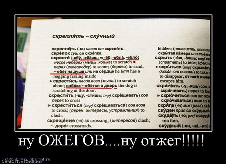 Фотография: 310109_nu-ozhegovnu-otzheg.jpg, пользователя: FatWildBoar