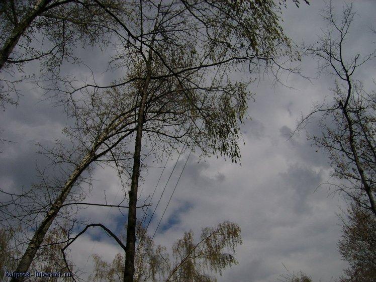 Фотография: SSA52969.JPG, пользователя: Kalipso8