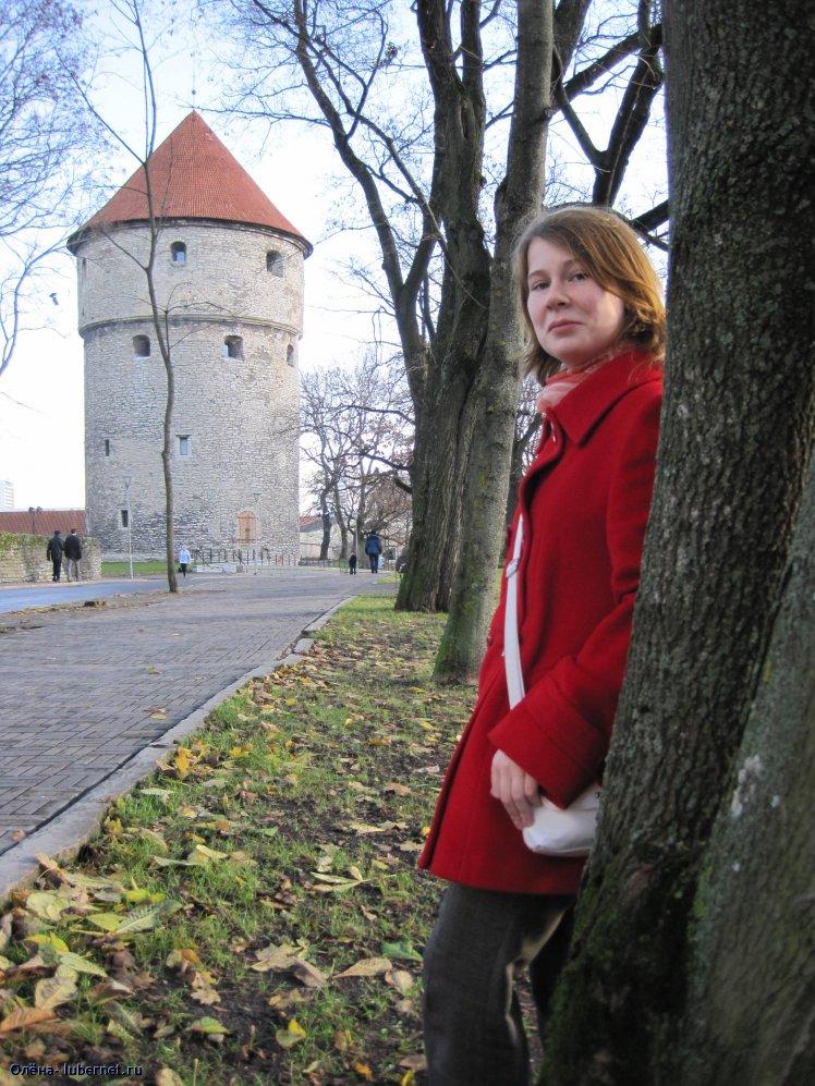 Фотография: Таллинн. Кин-ин-ди-Кёк., пользователя: Олёна