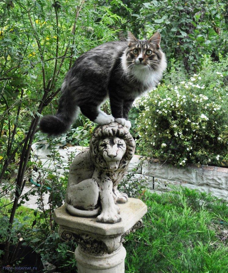 Фотография: я памятник себе воздвиг нерукотворный..., пользователя: Flora