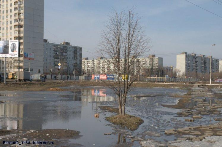 Фотография: Лужа 2010 .jpg, пользователя: Евгений_1468