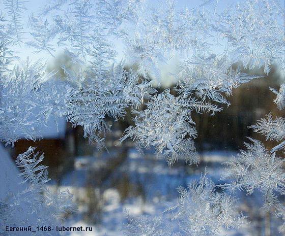 Фотография: Зимние-рисунки, пользователя: Евгений_1468