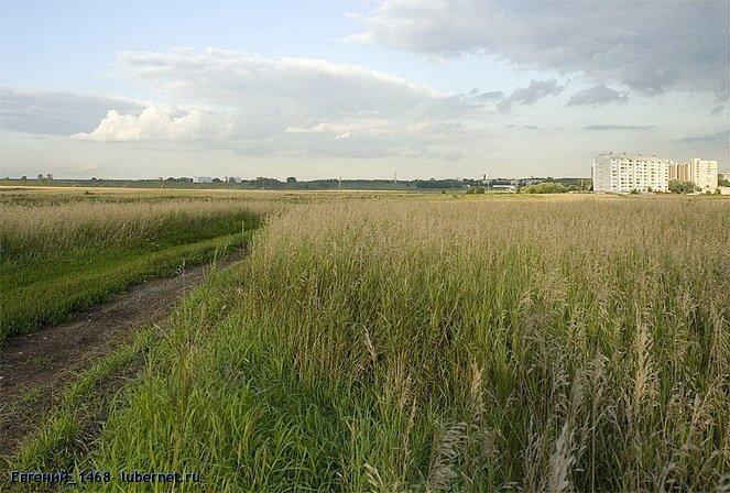 Фотография: Чистое поле 2006 .jpg, пользователя: Евгений_1468
