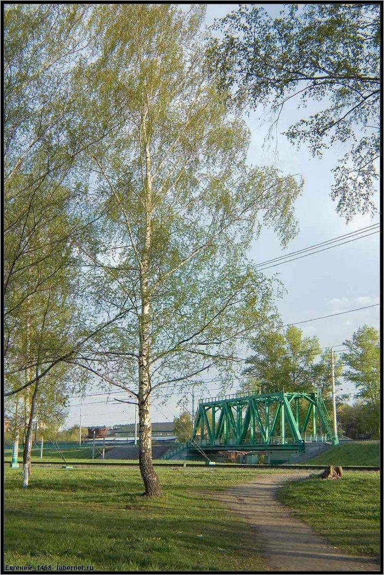 Фотография: Зеленый-жд-мост.jpg, пользователя: Евгений_1468