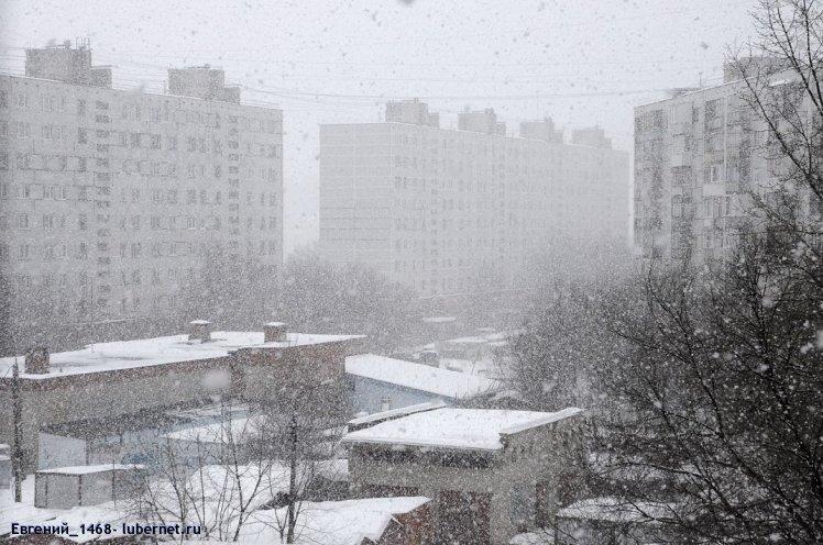 Фотография:  снегопад 2009 весна.jpg, пользователя: Евгений_1468