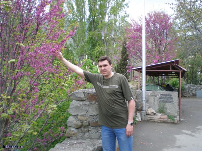 Фотография: Хочу сорвать цветущую ветку с дерева, пользователя: Приват