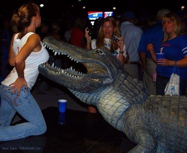 Фотография: крокодил.jpg, пользователя: ken hen