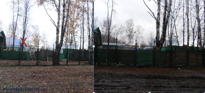 Фотография: МинусОдноДерево.png, пользователя: Nurochkad