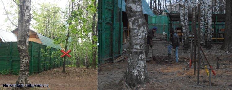Фотография: Еще минус дерево.png, пользователя: Nurochkad